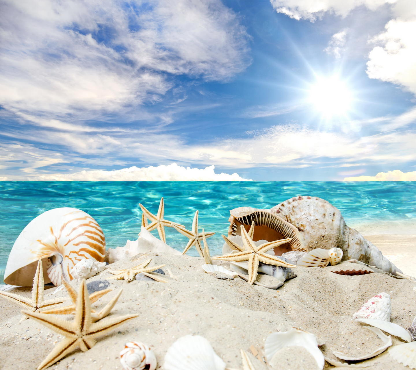 Sunshine Summer Beach Wallpaper