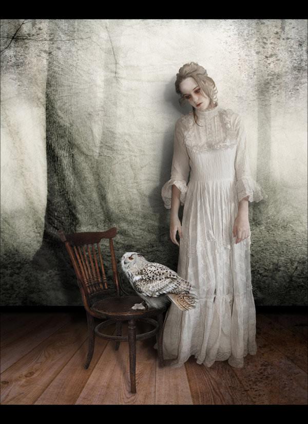 The Portrait Photography
