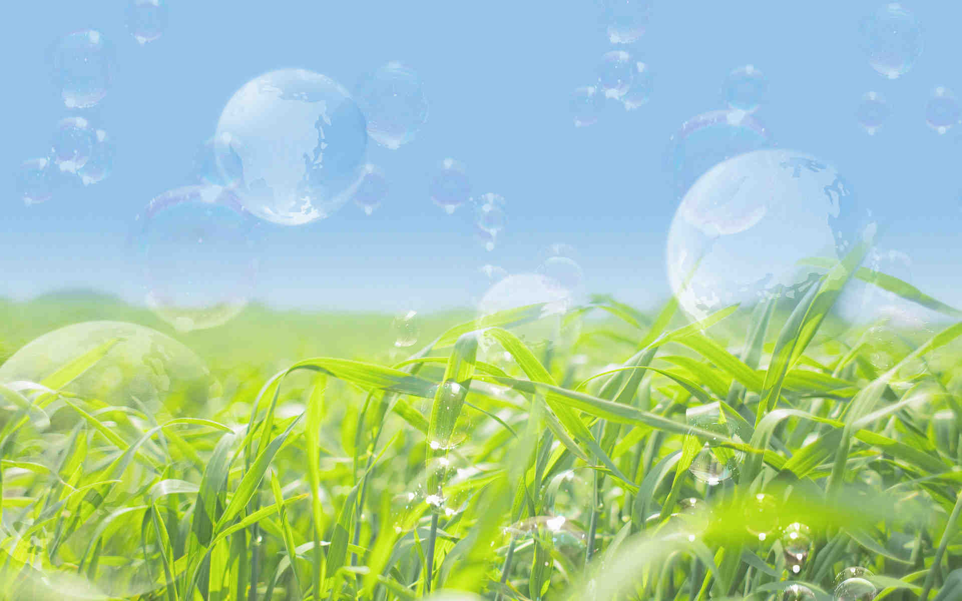 Transparent Bubbles Nature Wallpaper