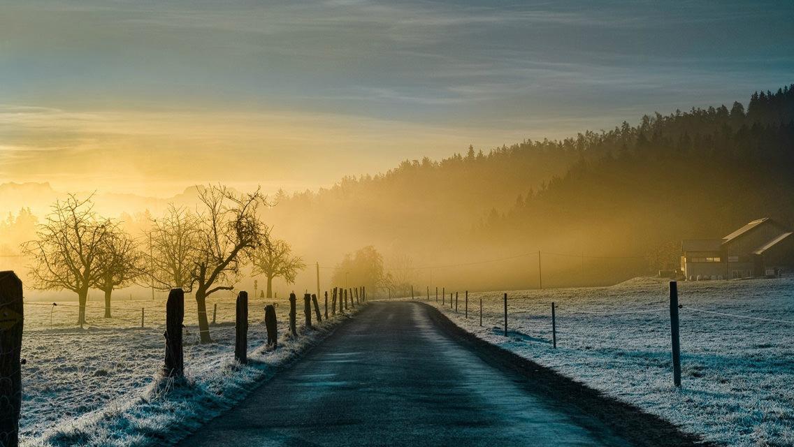 Winter Snowy Road HD Wallpaper