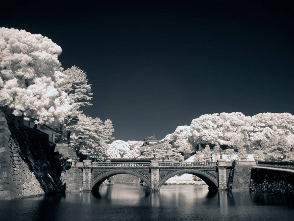 Bridge Infrared Photography