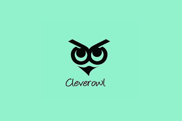 Clever Owl Logo Design