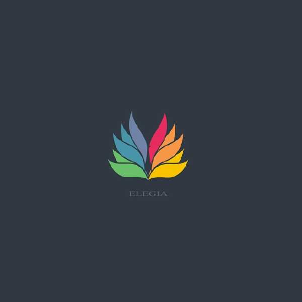 Colorful Bird Feather logo