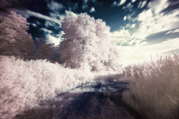 Infrared Surreal Photography