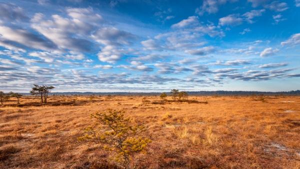 Nature Sky Photography