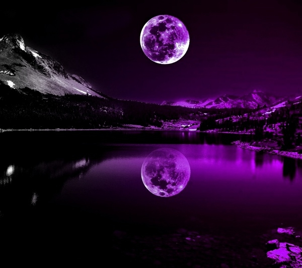 Purple Moon Light Wallpaper