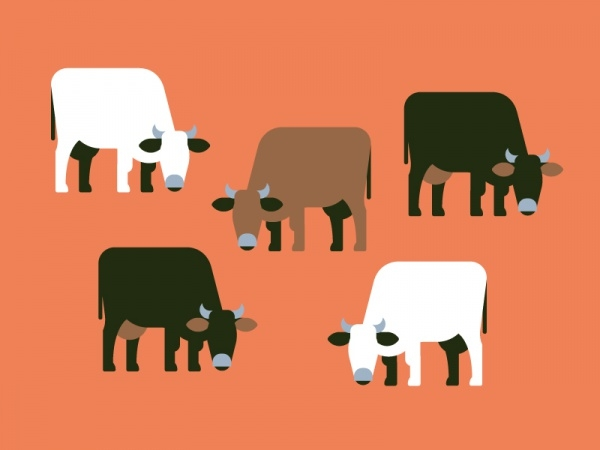 Beautiful Cows Pattern
