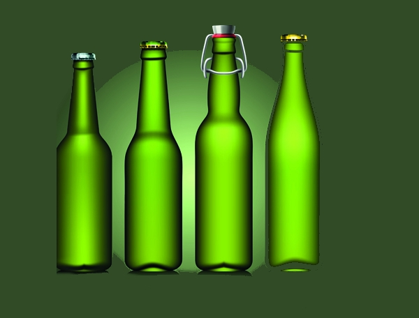Beer bottle design elements vector