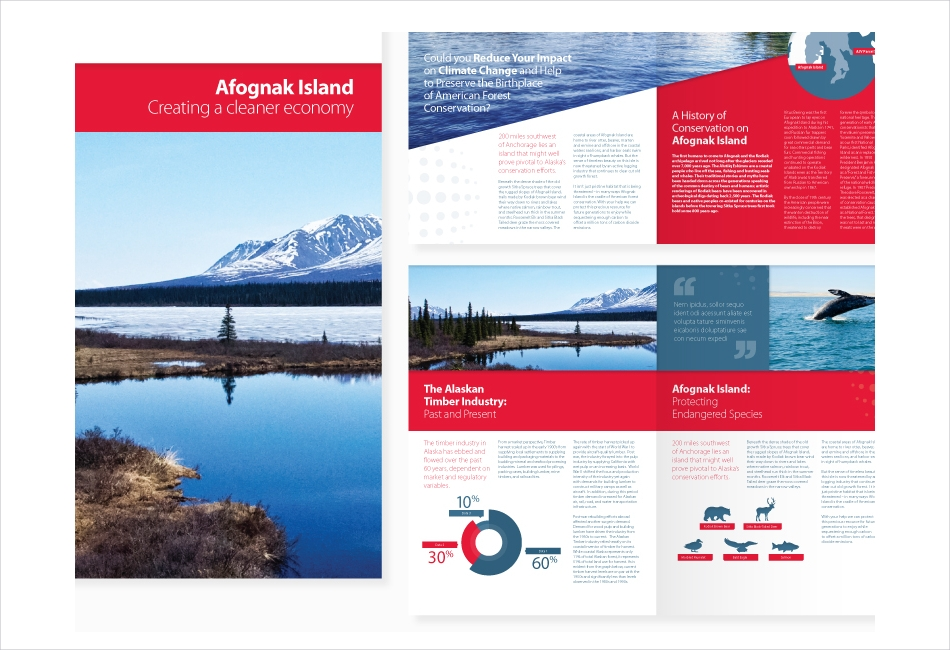 Brochure layout for a clean energy company
