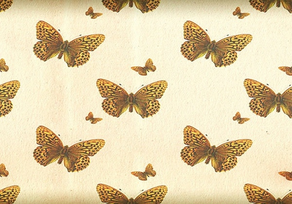 Butterfly Pattern with an Antique Touch
