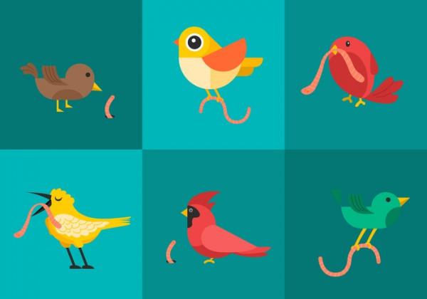 Early Bird Artwork Vectors