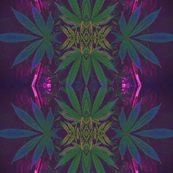 Elegant Trippy weed Pattern