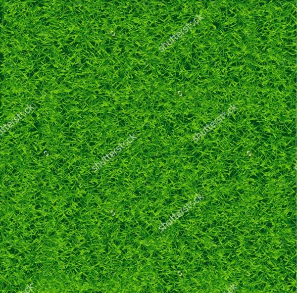 Green Soccer Lawn Field Texture