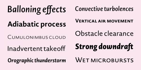 Italic typography Professional font