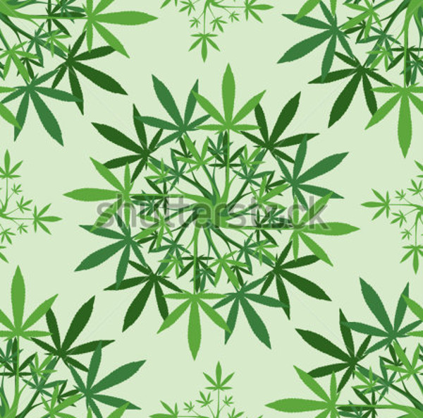 Marijuana leaves floral Pattern
