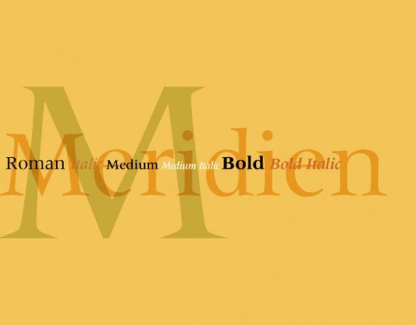 Professional Medium Italic Font