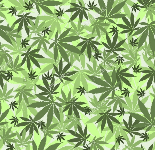 Seamless cannabis leaves pattern