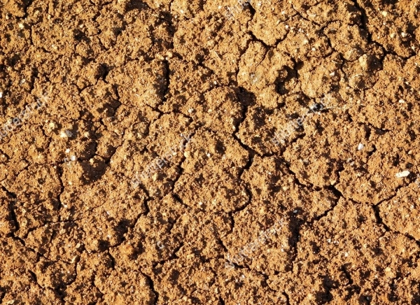 Seamless soil Land Texture