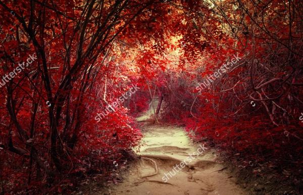 Surreal colors of fantasy landscape