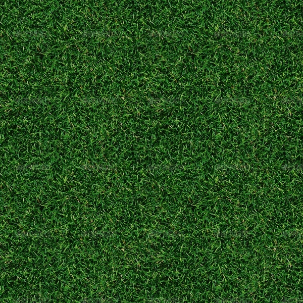 Tileable Grass Texture Pack