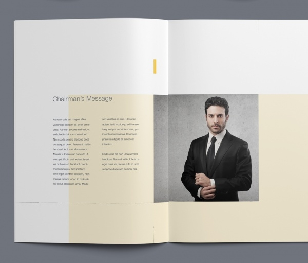 Ultimate Company Profile Brochure