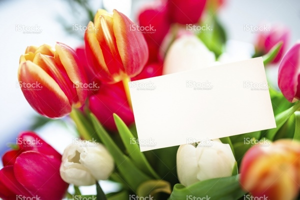 colorful tulips bouquet close up