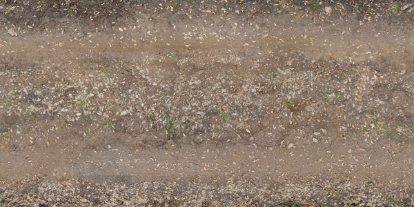 irregular  dirt road texture