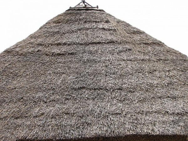 Amazing Thatched Roof Texture