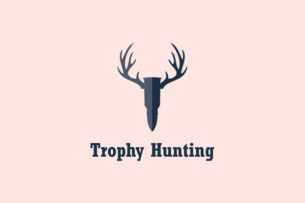 Antlers Shot Trophy Hunting