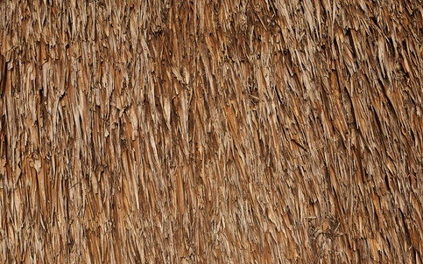 Awesome Thatched roof texture