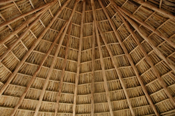 Beautiful Thatched Roof Texture