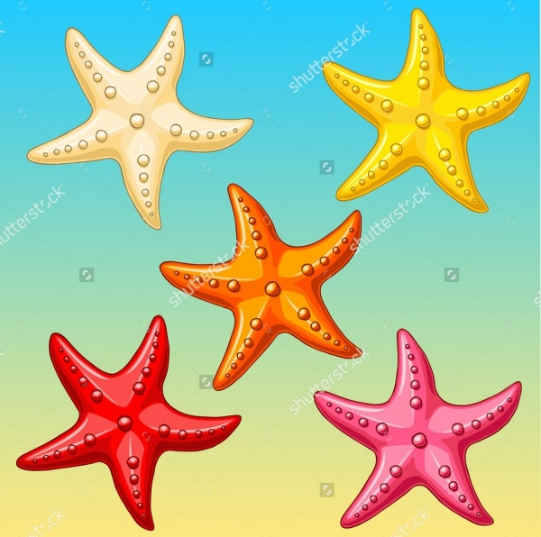Cartoon Sea Stars Vectors
