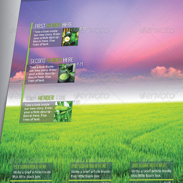 Clean Green Magazine Brochure