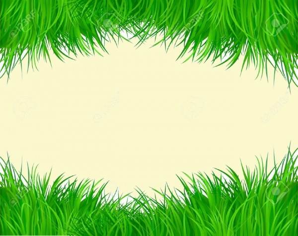 Decorative Green Grass Vector