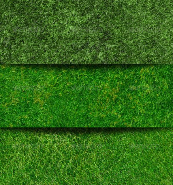 Download Seamless Grass Texture