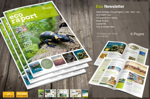 Eco Newsletter Report Brochure