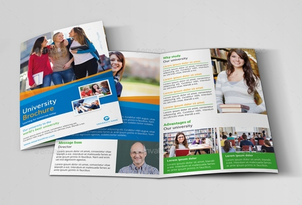 Education Foundation Brochure Design