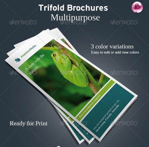 Flexible Trifold Zoo Brochure