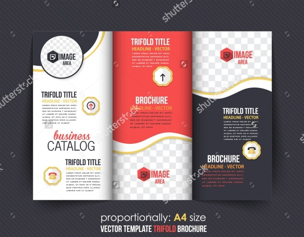 Folded Brochure Design and Catalog Vector