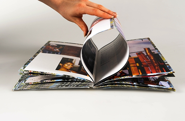 french folded book brochure