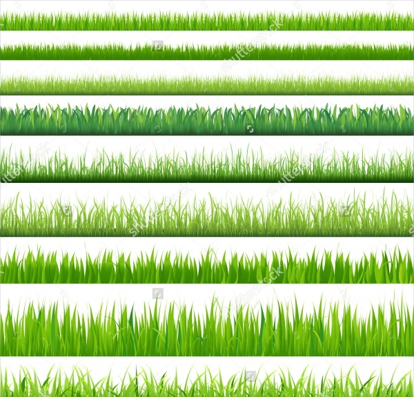 Isolated Green Grass On White Background,