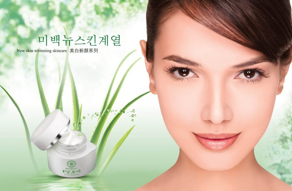 Korea Cosmetics Advertising Flyers