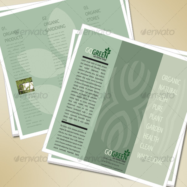 Modern Go Green Brochure