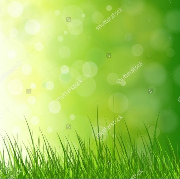 Natural Green Background Vector Grass
