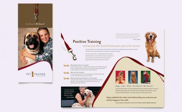 Pet Training & Dog Walking Brochure