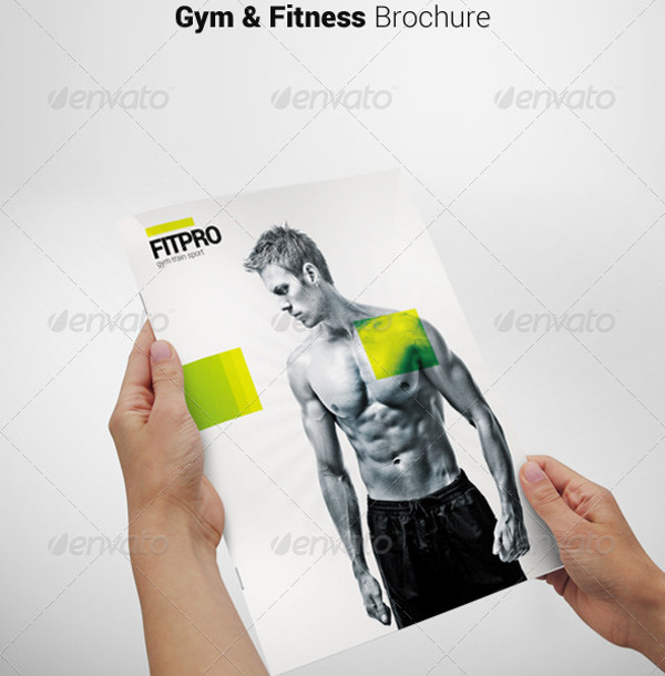 Professional Fitness Brochure