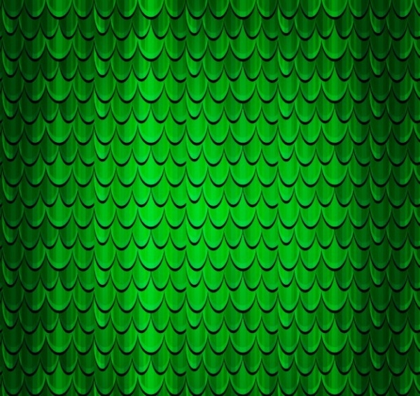 Scales of a reptile background Texture