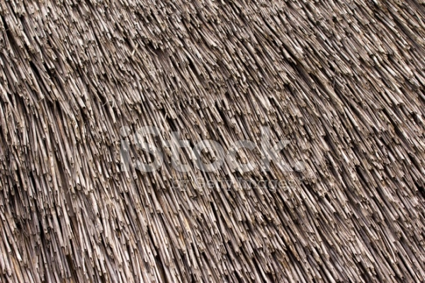 Thatched roof texture Closeup of straws