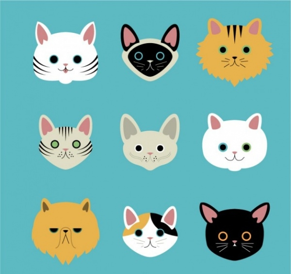 Variety of cat breeds Vector