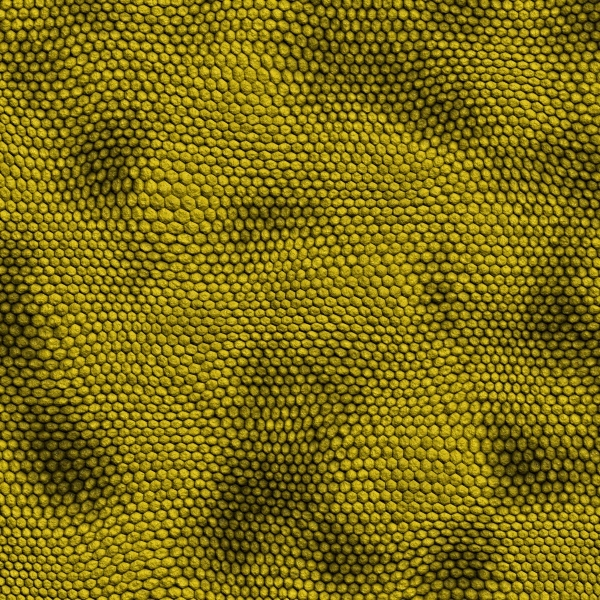 Yellow Snake Scales Texture